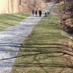 Nature Walks - English Mountain Recovery Center