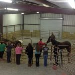 women inside barn with horses - Equine Interaction Experience - English Mountain Recovery