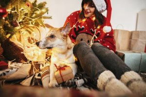 young woman with her Jack Russell Terrier on the floor near a lit Christmas tree - gratitude